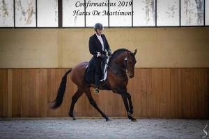 Coraçao la Goudelie confirmation mars 19